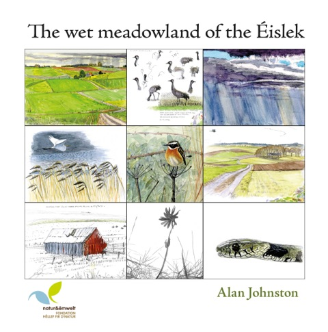 The Wet Meadowland of The Éislek